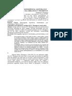 norberto.pdf