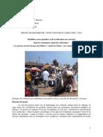 Sylvain Racaud_candidature_post-doc-SMS-2014.pdf