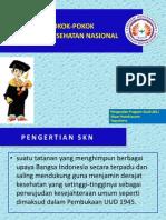 Pokok-Pokok Sistem Kesehatan Nasional