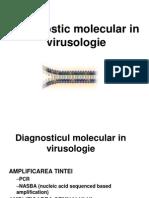 Dg Molecular HIV 2013 lp virusologie
