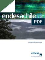 Endesa Informe Sostenbilidad 2012 .pdf