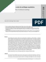 (Buscando) Os efeitos sociais da morfologia arquitetônica