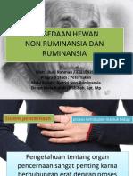 perbedaan non ruminansia dan ruminansia
