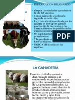 Historia de La Ganaderia (1)