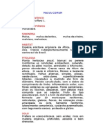 Malva-comum - Malva parviflora L. -  Ervas Medicinais – Ficha Completa Ilustrada