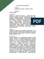 Sálvia-do-rio-grande - Lippia alba [Mill.] N.E. Brown. Ex Britt. e Wils. - Ervas Medicinais – Ficha Completa Ilustrada