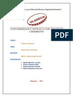 MONOGRFIA TRIBUTARIO.docx