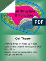 subcellular organelles-par t1