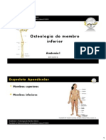 Aula T05 - Osteologia Do Membro Inferior