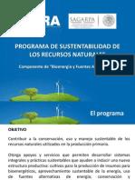 Presentación Bioenergía y Fuentes Alternativas 2013