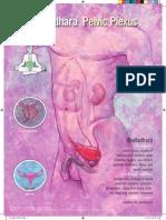 Sаhaja Yoga Medical Posters 2005