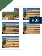 Plantaciones de Frondosas Para Produccion de Madera de Calidad en Castilla y Leon Oscar Cisneros Gonzalez 1