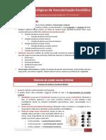 Alterações Patológicas da Vascularização Encefálica