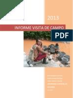Informe Visitas de Campo Semestre 2013