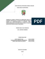 Viabilidad de Creacion de Empresa Seiic Proyecto Especilizacion Gestion de Proyecto