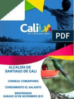 Presentación Consejo Comunitario El Saladito 2013