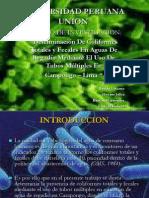 Expo de Microbiologia