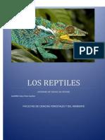 Fauna Reptiles Corregido