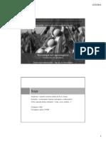 10.1 FA - Culturas - soja - produções e tendências - 04 e 11 05 2011