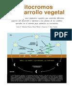 Fitocromos y Desarrollo Vegetal