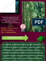 SISTEMAS AGROFORESTALES HENRRY.ppt