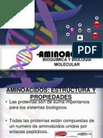 aminoacidos-130407231059-phpapp02