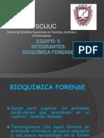 Presentacion Equipo 5.