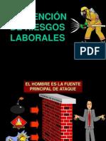 Capítulo II - Prevención de Riesgos Laborales