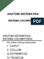 Bab v Anatomi Sistematika