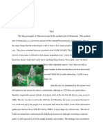 tikal report 2