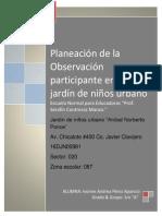 PLANIFICACIÓN DE LA PRACTICA DE OBSERVACIÓN PARTICIPANTE