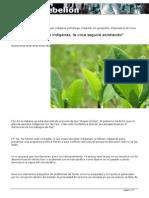 Existan o no existan indígenas la coca seguirá existiendo Sánchez.pdf