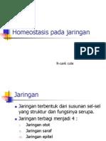 Homeostasis Jaringan