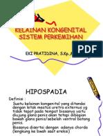 Kelainan Kongenital Sistem Perkemihan