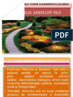 Festivalul Sanselor Tale