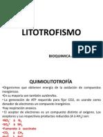 3litotrofismokok
