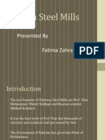 Pakistan Steel Mills