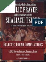 Laws of Shaliach Tzibur