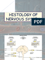 Histology Of nervous System