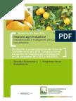 Producción y comercialización del limón de Tucumán en el año 2012.pdf
