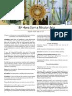 Hora Santa Mission Aria 2013