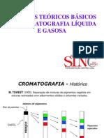 Teoria de Cromatografia