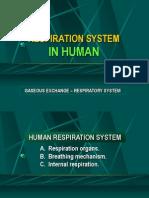 B. Respiration System - Part 2