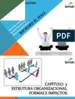 Modelos Organizacionais 1
