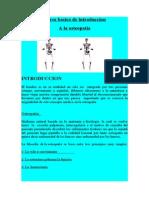 Curso Basico de Osteopatia