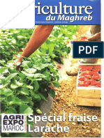 Agriculture Du Maghreb (Fruits Rouges)