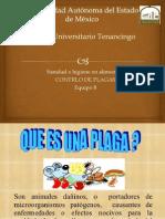 control de plagas 2.pptx