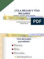 VESÍCULA BILIAR Y VÍAS BILIARES