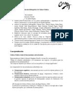 Informe Investigación Cultura Política Bio Bio
