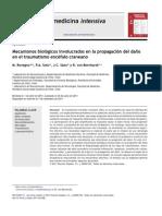Mecanismos biológicos involucrados en la propagación del dano